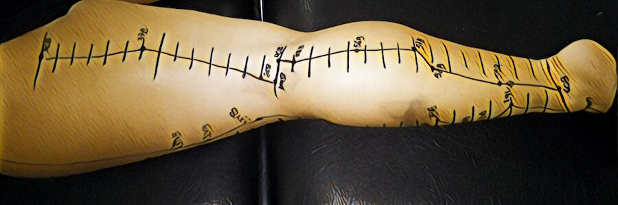 meridiano bexiga pontos de acupuntura na perna